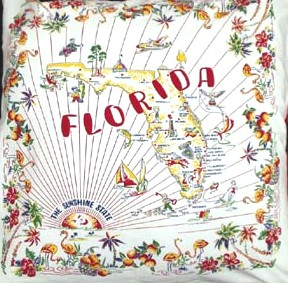 Florida_pillow